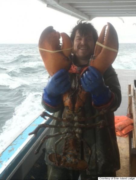La taille du homard que ce pêcheur a attrapé va vous faire halluciner