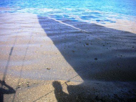 En s'approchant, ce qu'ils avaient pris pour un banc de sable se révèla être tout autre chose.