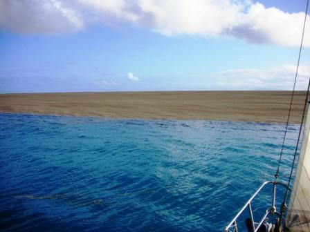 Une énorme quantité de pierre ponce flottait à la surface de l'eau. Cela ressemblait à une plage.