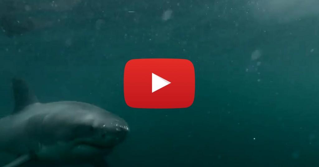 Vidéo: Il ne s'attendait pas à une rencontre aussi dangereuse sous l'eau….
