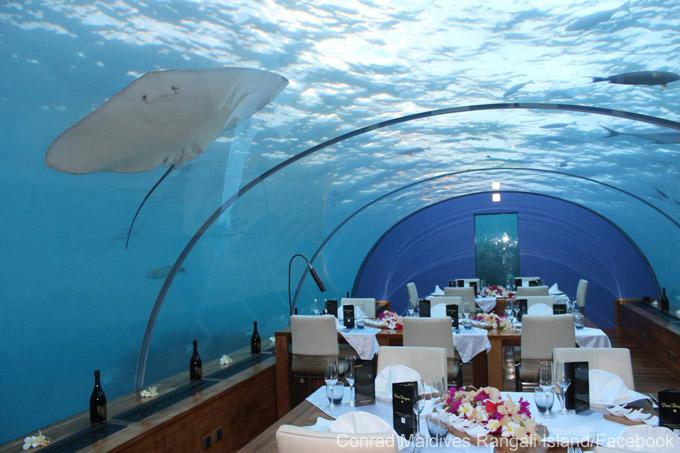 Le restaurant le plus incroyable du monde