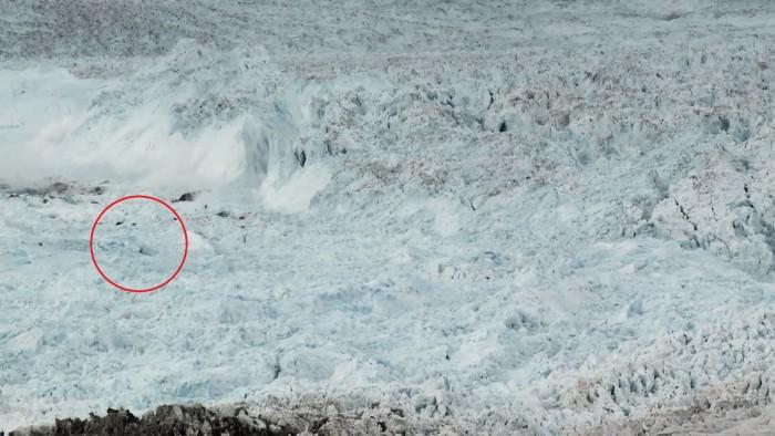 Ils ont placé une caméra au Groenland, les images qu'elle en a sorties sont effrayantes